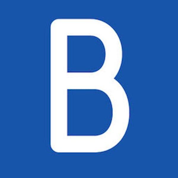 CabinPanda-CabinPanda and BlueSnap Integration