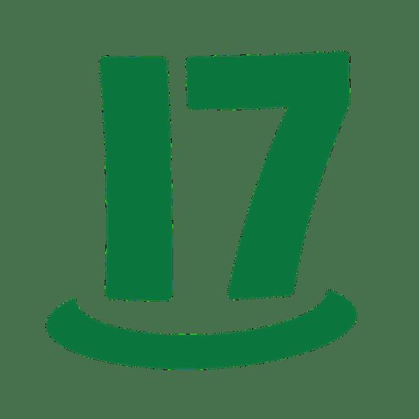 CabinPanda-CabinPanda and 17hats Integration